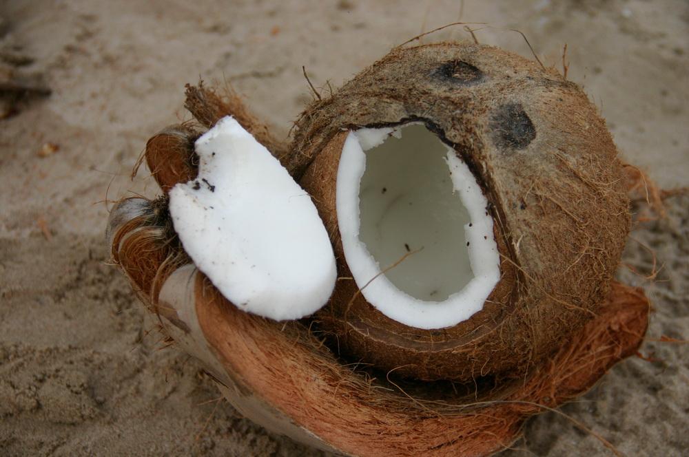 кокос на пляже Sam Phraya