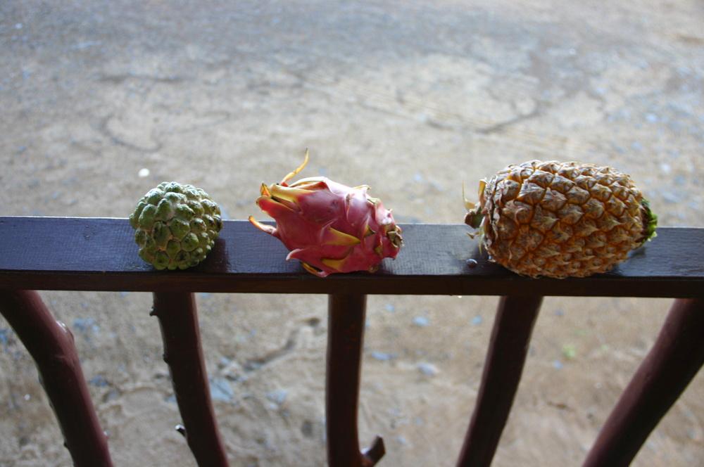 фрукты на lamae