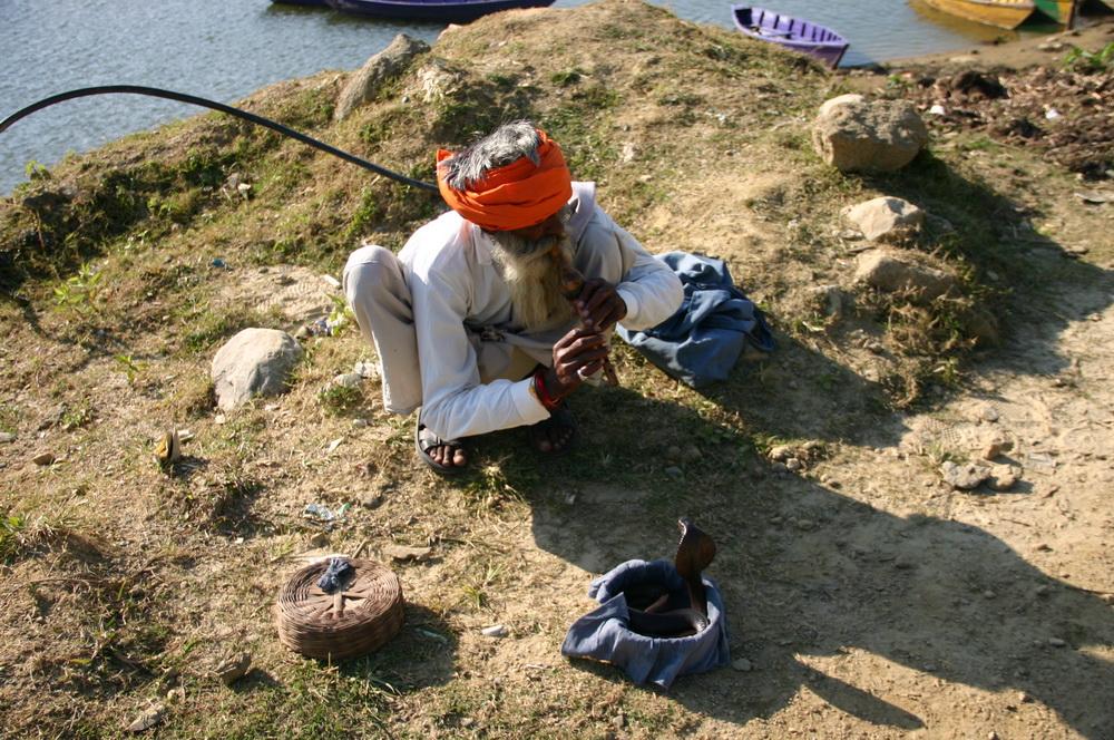 Непал повелитель змей факир