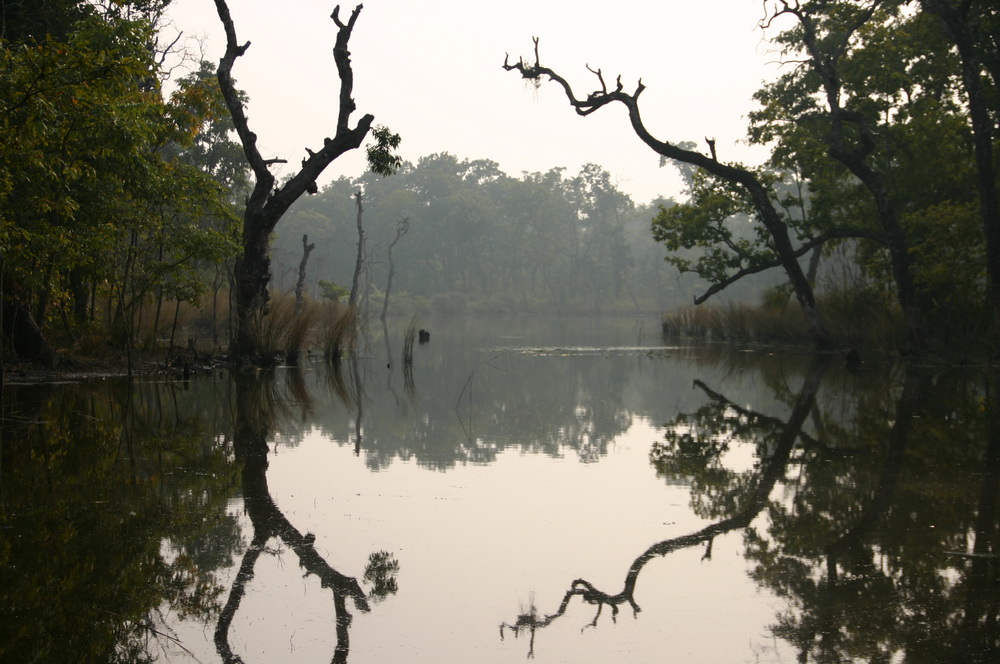 Озеро в джунглях Непал